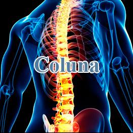 coluna1-1