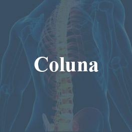 coluna1